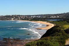 sydney northern beaches tour - dee why