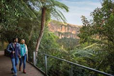Blue Mountains private tour